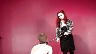 BDSM male sex slave used as a puppy dog Thumbnail